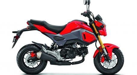 HONDA MSX 125. La marca de las alas, rediseña su modelo Sport Rider